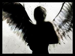 就这样五百年的轮回后天使如愿以偿的跟恶魔在了一起坠入了凡间   天...