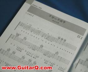 E网琴深 民谣吉他入门教程 附1CD