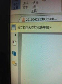 ...啊 该文档包含交互式表单域