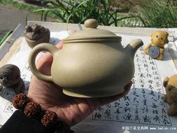 素可泰圆叶立枝山乌龟-本山绿泥矮潘壶,半手工成型,作者是诵痈.容量约是280ML.口盖...