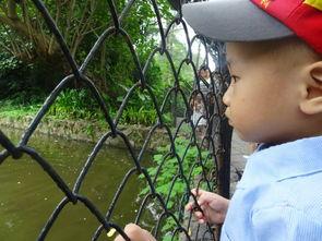 ...公姑姑还有宝宝一起去动物园浪啦