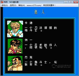 fc快打旋风无敌版下载中文版 fc快打旋风金手指西西游戏下载