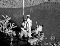 泥鳅高密度养殖池塘微孔增氧系统设置方法