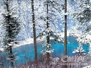天空飘着一片雪】-银装素裹的山岭是冬日里一道洁白的风景线,九寨沟飘下了今秋的第一...