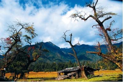 日看四季,倾波牧场恍若隔世   10月底之后前往倾波牧场,会给你最精...