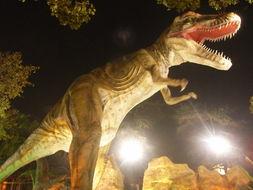 旅人游迹 -主题 自贡恐龙灯展续5