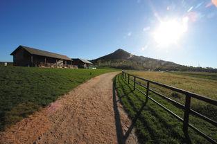 亿达蓝山全季节田园牧场生活全面展开