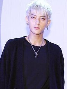搜狐娱乐讯 据韩媒报道,SM相关人士称EXO黄子韬将出演电影版《何...