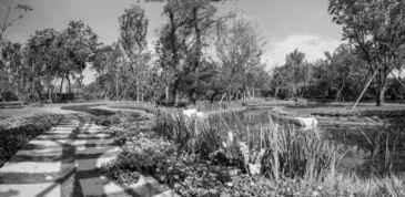 温江区万春镇幸福田园二期生态湿地公园观景.-探秘农民收入高位增...