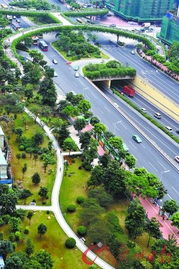 绿色公园与广州大道同行