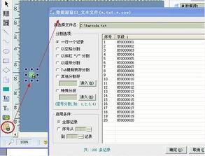 ...量输出矢量条码图形导入到CDR和AI中使用