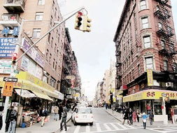 纽约华埠小区未来发展看点多 华人期待旧貌换新颜