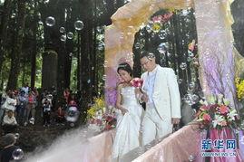 """里山新印象――神木下婚礼山海恋""""集体婚礼在台湾阿里山风景区的""""..."""