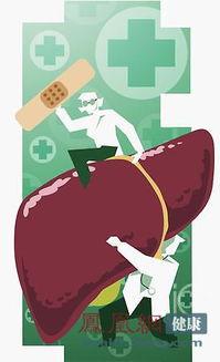 识别看看-二、从症状与危害方面看甲肝与乙肝的区别   1、甲型肝炎病毒进入人...