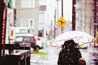...眼前一下,看到下雪,可以在下雪天里漫步在这里的每一个角落.-...