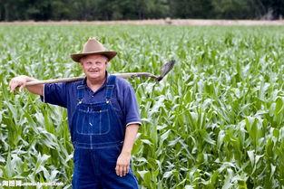 ...地里扛着铁撬的外国老人图片素材 图片ID 680423 男人图片 人物图片