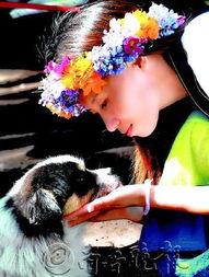 述:见到美女,狗狗两只眼睛直勾勾的,都看呆了.   作者:于海涛(...