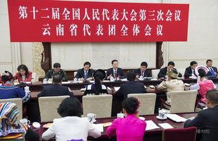 2015年3月12日,中共中央政治局常委、国务院副总理张高丽参加十二...