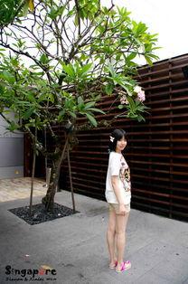 ...,回眸一笑面如桃花 立足坡国 融入生活 新加坡...