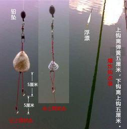手竿钓鲢鳙鱼的技巧
