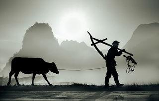 傍晚种田归来的农民高清摄影图片