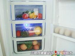 容声BCD-568WYM/A保鲜盒-速冻功能是卖点 近期热销冰箱选购指南