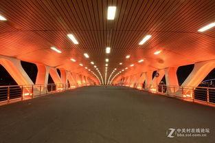 上海徐汇滨江 龙腾大道龙华港桥夜景