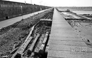 高集海堤改造上午开工