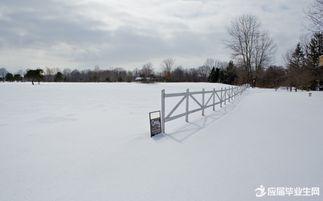 如何用PS做雪景??