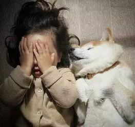 出差与壮熊玩多p- 在法国巴黎出生的2岁混血女娃Philo与9岁柴犬PomPon的日常生活,...