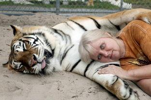 奇怪的动物,很少见的动物,不常见的动物