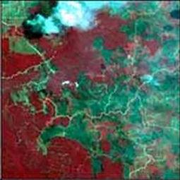 ...图像,林火通过烟气羽流来探测-遥感在森林资源调查中的应用