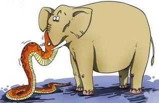 人心不足蛇吞象是什么意思