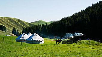 南山牧场一日游