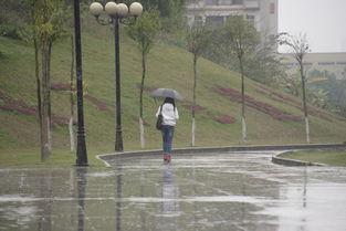 独自一人撑伞在雨中高清图片下载 编号6101354 红动网