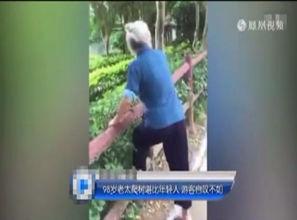 98岁老太太爬树飞快 游客都不敢相信自己的眼睛