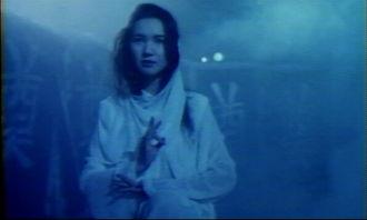 1991 捉鬼女天师,花街神女 杨丽菁,恐怖喜剧 霸王花