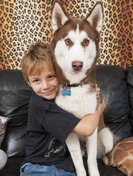 英国一家庭与149只动物同居