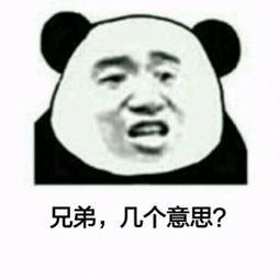 itisasecret啥意思-...情 搞笑,你说什么了 你说什么 我没听清 熊猫人 没听清 斗图 怼人表...