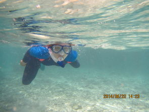 2014去寻找失落人间的天堂 马代SAFARI岛