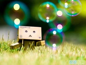 爱一个人的说说,关于喜欢一个人的说说