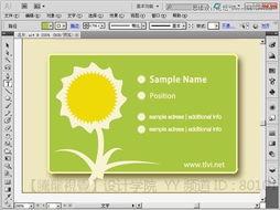 7m2上海育路教育网-平面设计培训 通过Illustrator曲功功能设计名片