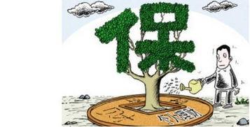 什么叫投资型保险