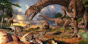 多已形成胚胎的恐龙蛋化石,旁边还有许多微小的恐
