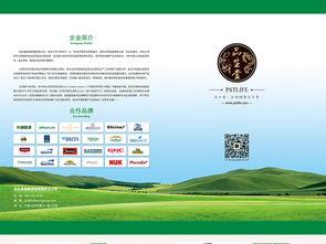 宣传单页设计模板图片下载psd素材