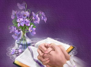药师奇典-《Amazing Grace》中文翻译为《奇异恩典》,也有人称《天赐恩宠》...
