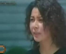90年代大陆剧中的港台演员