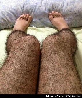 全包式毛腿丝袜,女性夏季防性骚扰必备 好毁三观 感觉不会再爱了