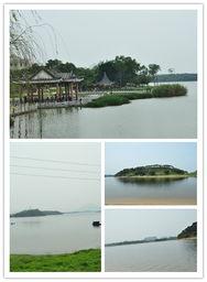 ...行松山湖,呼吸雨后大自然,活动照片更新D2P