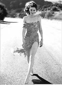 美丽 智慧 强干 阿曼达 皮特 好莱坞野蛮女友